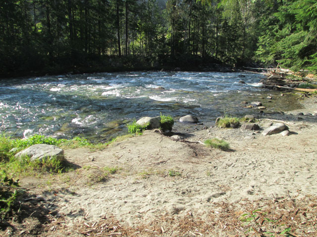 Rosebery Provincial Park New Denver Campgrounds Slocan Lake